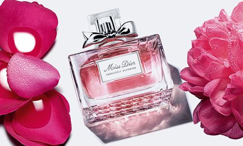 Tập đoàn Louis Vuitton Moët Hennessy thâu tóm Dior qua thương vụ 13 tỷ USD