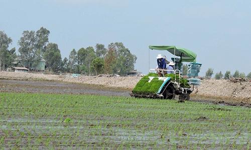 Xây dựng giá trị thương hiệu hạt gạo Việt Nam (Kỳ cuối)
